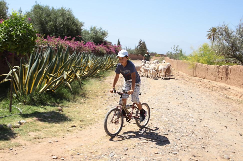 _hi-res_d_warin_biking_morocco_img_2407