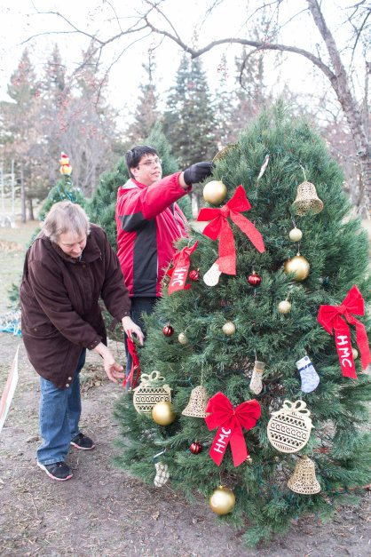 "Volunteers decorates a tree at the Kiwanis Holiday Lights at Sibley Park in Mankato, Minn., on Friday, Nov. 29, 2013. The Kiwanis Holiday Lights feature over one million LED lights decorating trees, fences and buildings in the park. New this year is the Mary Dotson Skating Rink, which will feature synthetic ice, enabling skaters to enjoy the rink regardless of the weather. ""Last year we were thrilled to have over 100,000 visitors. This year we're planning to further expand the event by adding more lights and lighted displays,"" said Scott Wojcik, Kiwanis Holiday Lights President. Photo by Ackerman + Gruber"