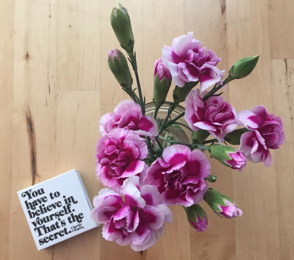 06_light_flowersbelieveinyourself.jpg